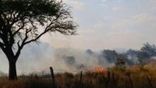 Video: incendio al lado del Cementerio Parque