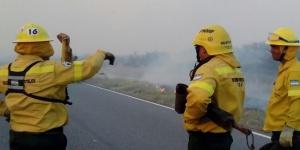Declararon en emergencia 300 mil hectáreas
