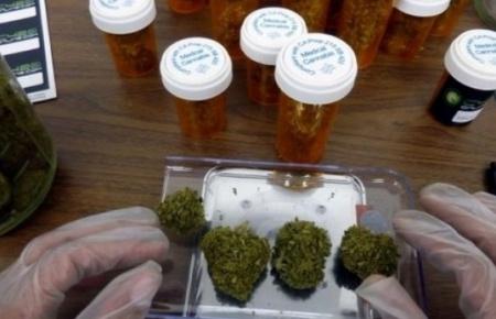 Reglamentan tres artículos de ley de cannabis medicinal