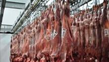 Santa Isabel: 25 toneladas de cabras a Angola