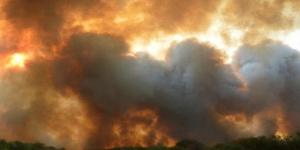 Hubo 50 incendios en un día: se quemó una casa y se electrocutó un bombero